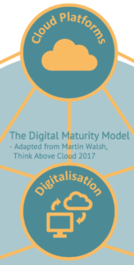 A cutout from the Digital Maturity Model